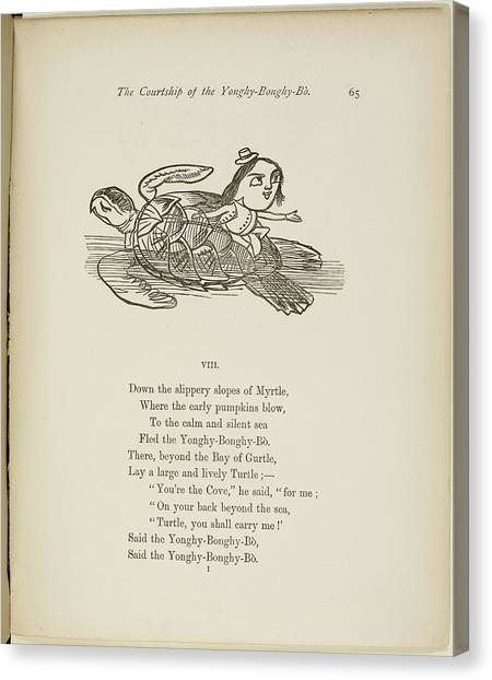 Tortoises Canvas Print - Yonghy-bonghy-bo by British Library