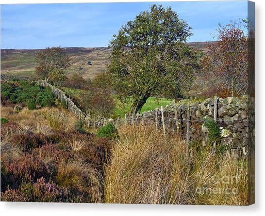 Yorkshire Moors England Canvas Print