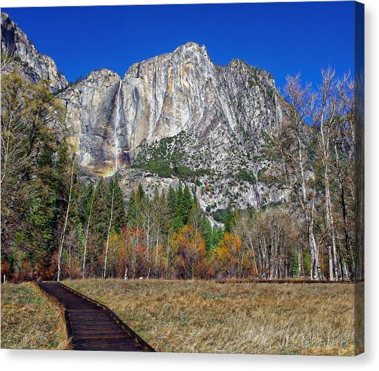 Yosemite Falls Canvas Print - Yosemite Falls From Cook's Meadow by Scott McGuire