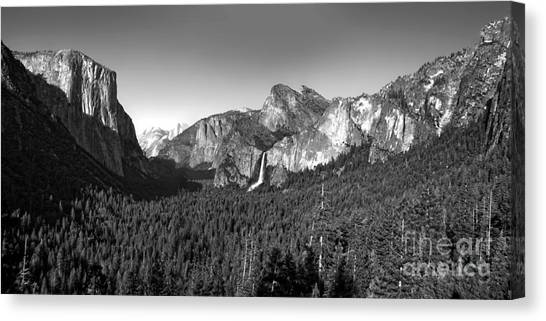 Angel Falls Canvas Print - Yosemite Inspiration Point by Gregory Dyer
