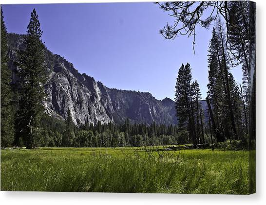 Yosemite Meadow Canvas Print