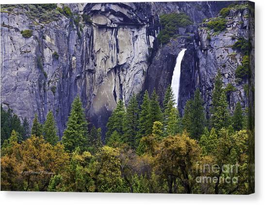 Yosemite Water Fall Canvas Print
