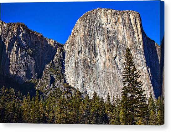 El Capitan Canvas Print - Yosemite's El Capitan by Garry Gay