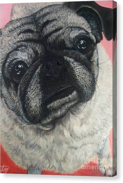 Yoshi Canvas Print