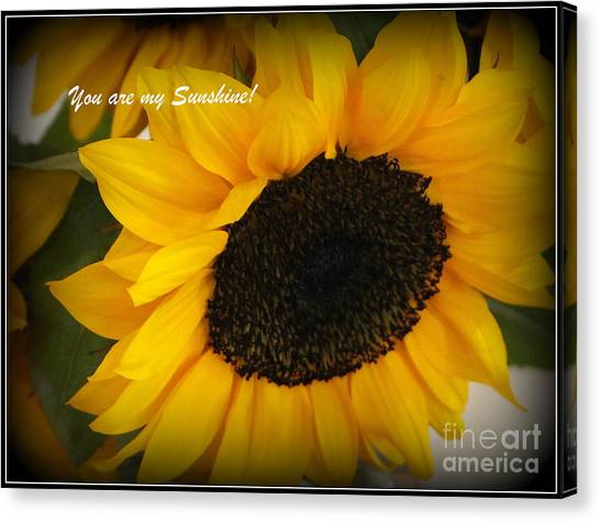 You Are My Sunshine - Greeting Card Canvas Print