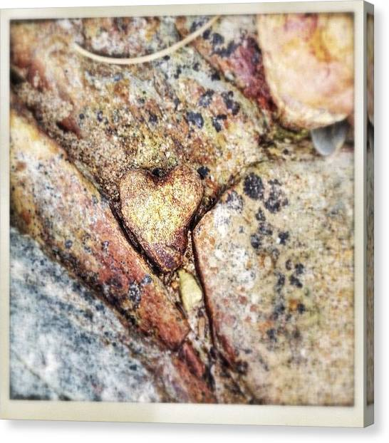 Shapes Canvas Print - You Have A Heart Of Stone by Candace Fowler