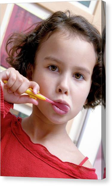 Toothbrush Canvas Print - Young Girl Brushing Her Teeth by Aj Photo/science Photo Library