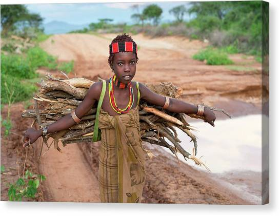 Ethiopian Woman Canvas Print - Young Hamar Girl Collecting Fire Wood by Tony Camacho