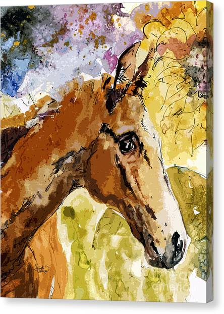 Young Life Horse Portrait Canvas Print