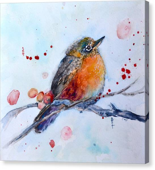 Young Robin Canvas Print