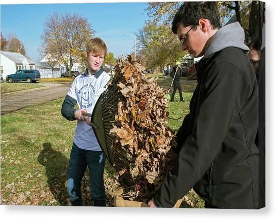 High School Canvas Print - Young Volunteers Raking Leaves by Jim West