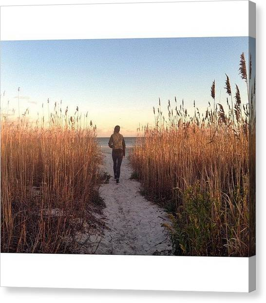 Seagrass Canvas Print - Your Life Has A Plan. It's Determined by Josh Kinney
