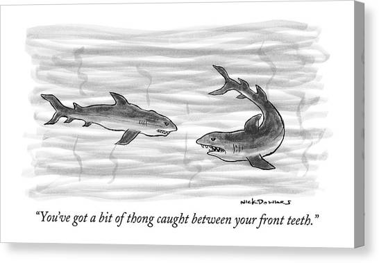 Shark Teeth Canvas Print - You've Got A Bit Of Thong Caught by Nick Downes
