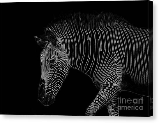 Zebra Art Canvas Print