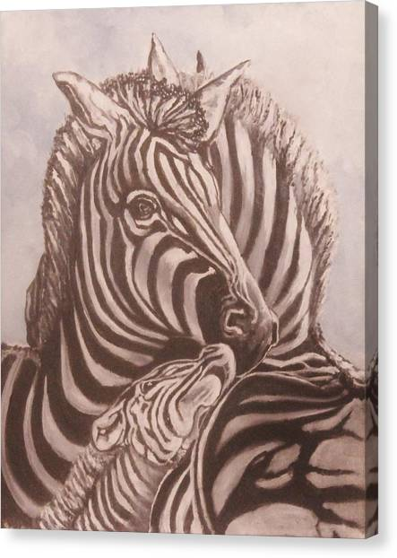 Zebra Family Canvas Print