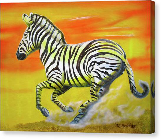 Zebra Kicking Up Dust Canvas Print