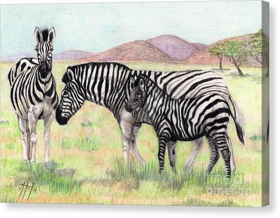 Zebra Trio Canvas Print