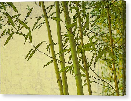 Zen Bamboo Abstract I Canvas Print