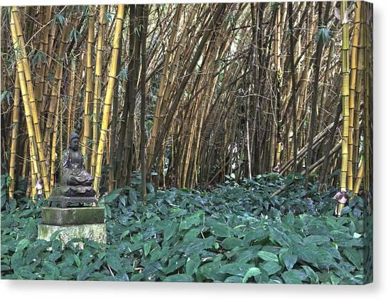 Zen Bamboo Canvas Print