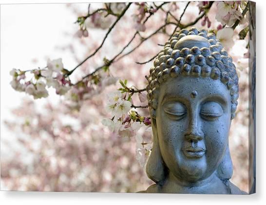 Zen Buddha Meditating Under Cherry Blossom Trees Canvas Print