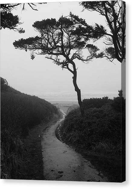 Zen Path Canvas Print