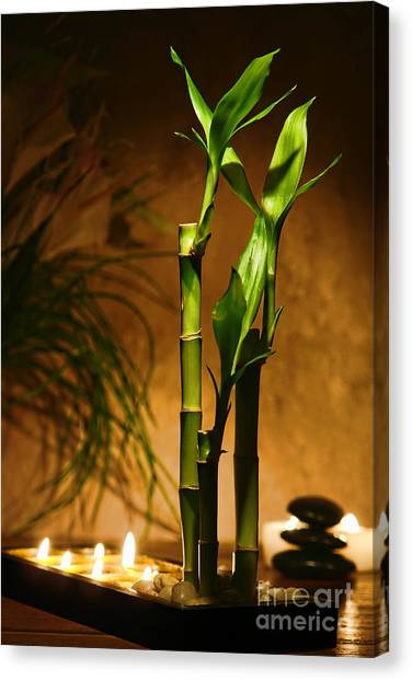Bamboo Canvas Print - Zen Time by Olivier Le Queinec