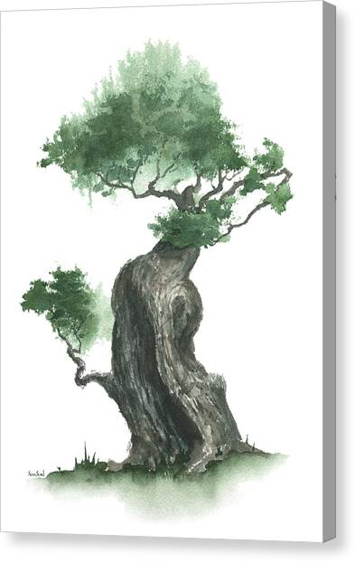Zen Tree 1000 Canvas Print