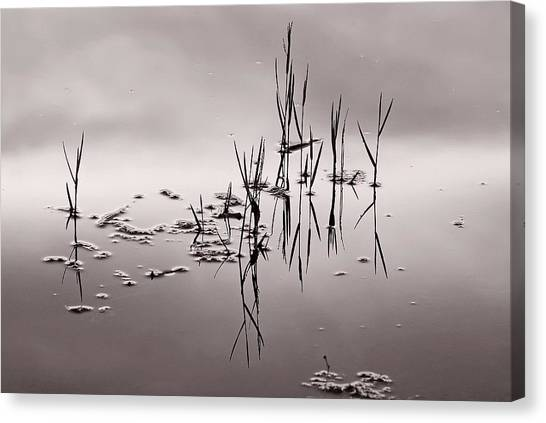 Zen Waters Canvas Print