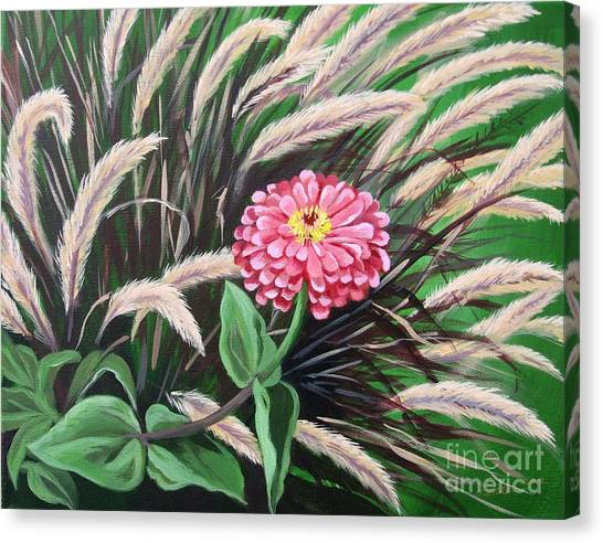 Zinnia Among The Grasses Canvas Print