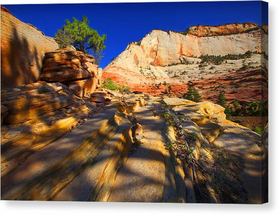 Zion National Park Usa Canvas Print