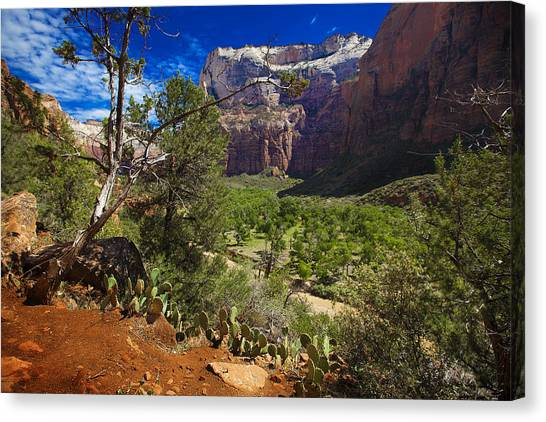 Zion National Park River Walk Canvas Print