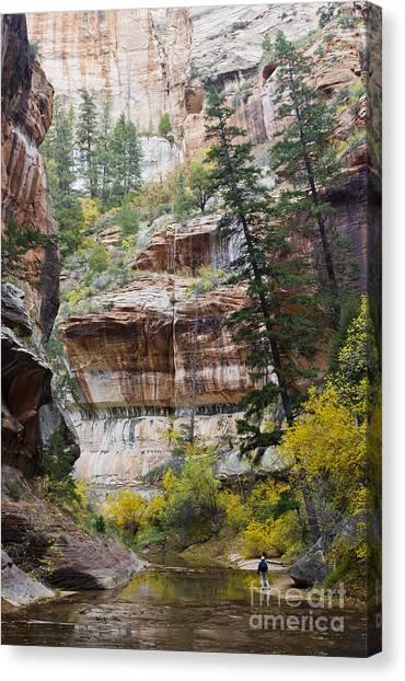 Zion Passage Canvas Print by John Blumenkamp
