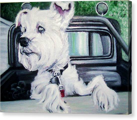 Zoey Waits For A Ride Canvas Print