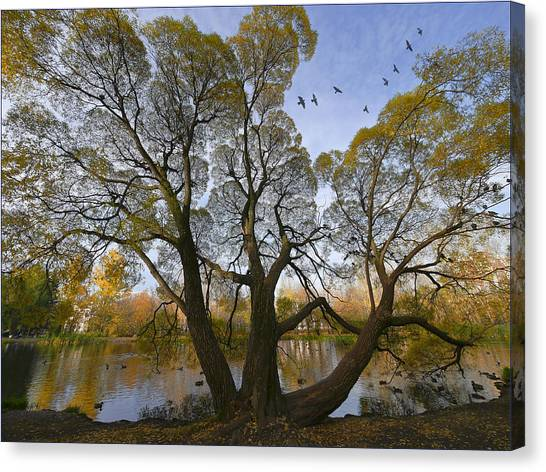 A Day Of October Canvas Print by Vladimir Kholostykh