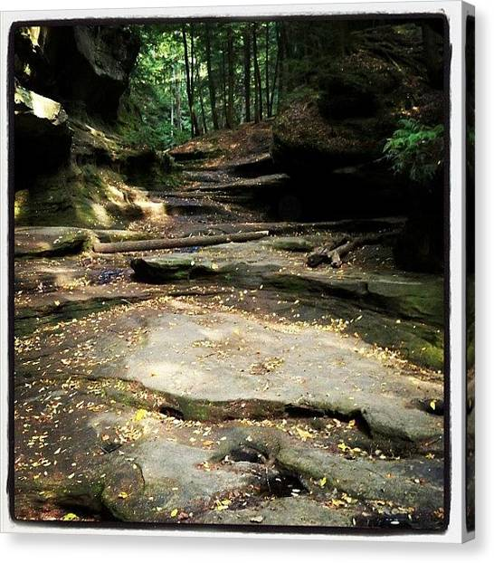 Ohio Canvas Print -  by Abril Andrade Griffith