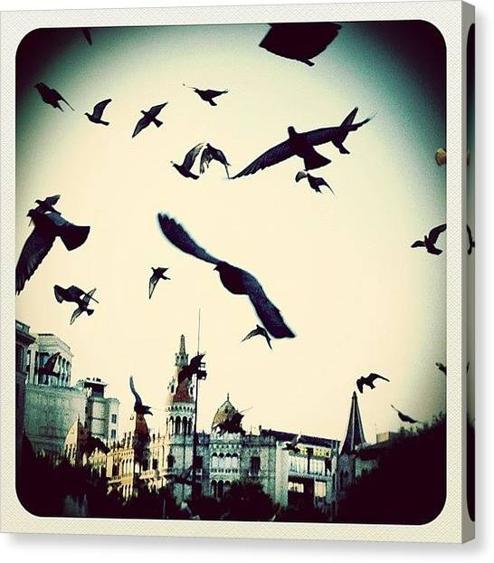 Barcelona Canvas Print - 🐦 Chasing Pigeons At 3am, We Must Be by Wilson Aw