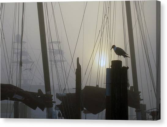 Early Morning At The Boat Docks Canvas Print
