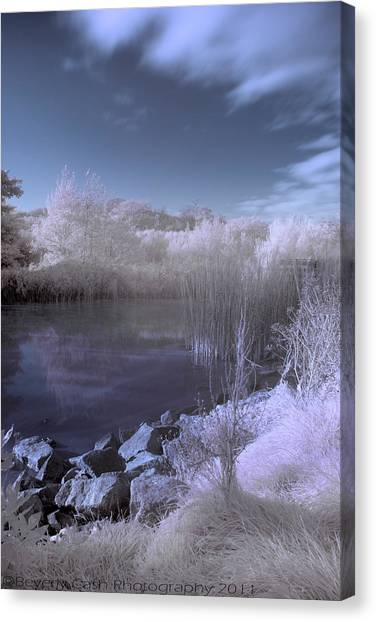 Infrared Pond Canvas Print