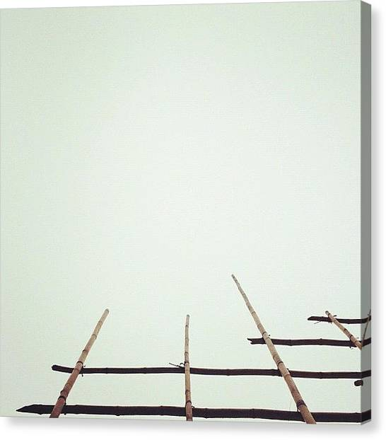 Bamboo Canvas Print - | Reach For The Sky | by Istories Chi