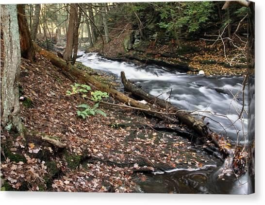 River Below Grayville Falls 2 Canvas Print