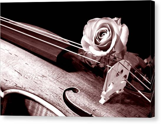 Rose Violin Viola Canvas Print