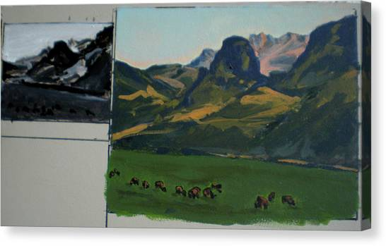 Study Of Electric Peak From Franks Place Canvas Print