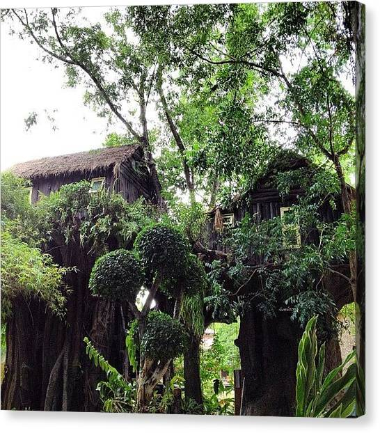 Jungles Canvas Print - 🏠 The Tree Houses 🌴 by Nancy Nancy