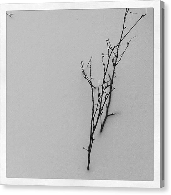 Snowflakes Canvas Print - Снег ***** by Angelina Golovina