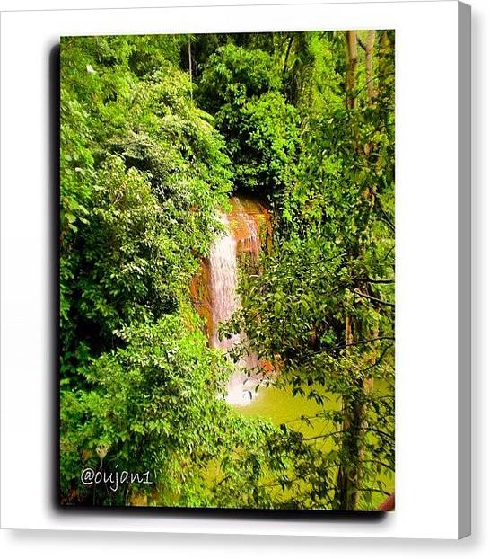 Jungles Canvas Print - A View From Tasek Lama Again, The by Ahmed Oujan