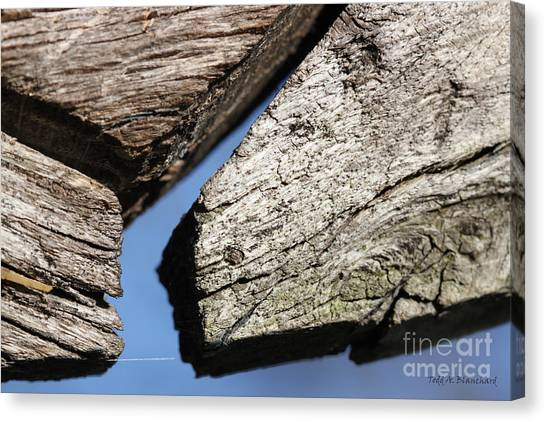 Abstract With Angles Canvas Print