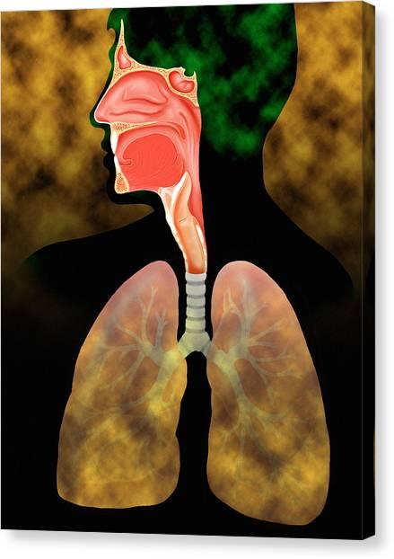 Air Pollution Canvas Print by David Gifford