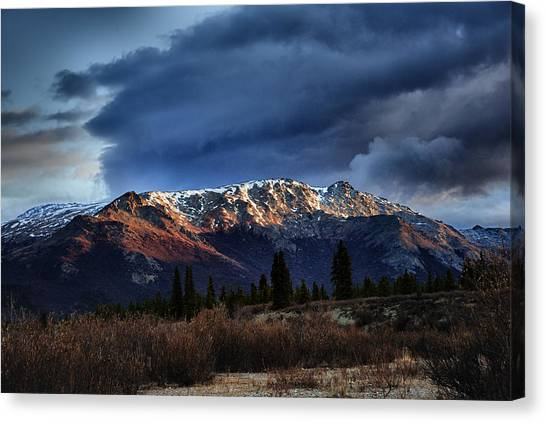 Denali Canvas Print - Alaskan Morning by Rick Berk