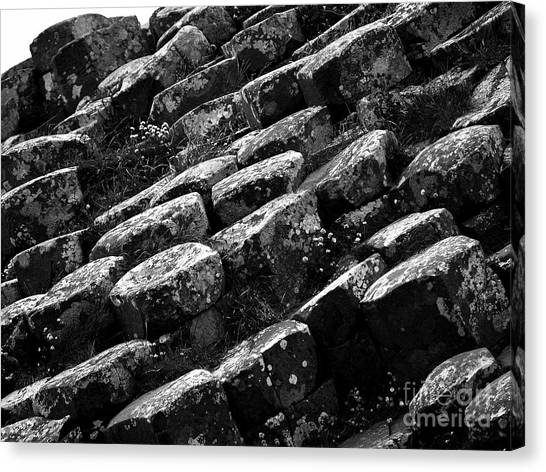 Another View Of The Giants Causeway Canvas Print
