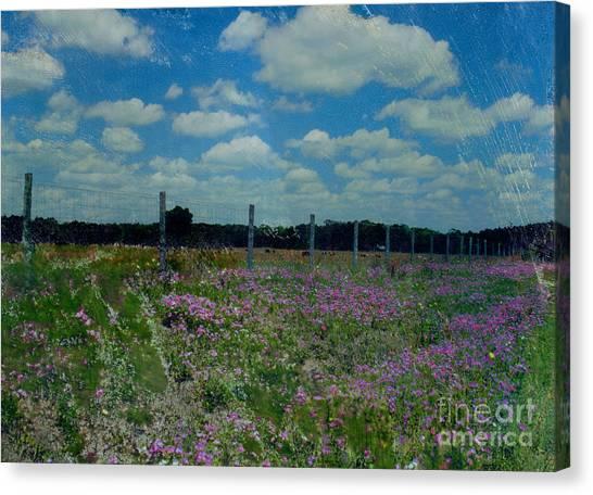 Archer Flax Canvas Print